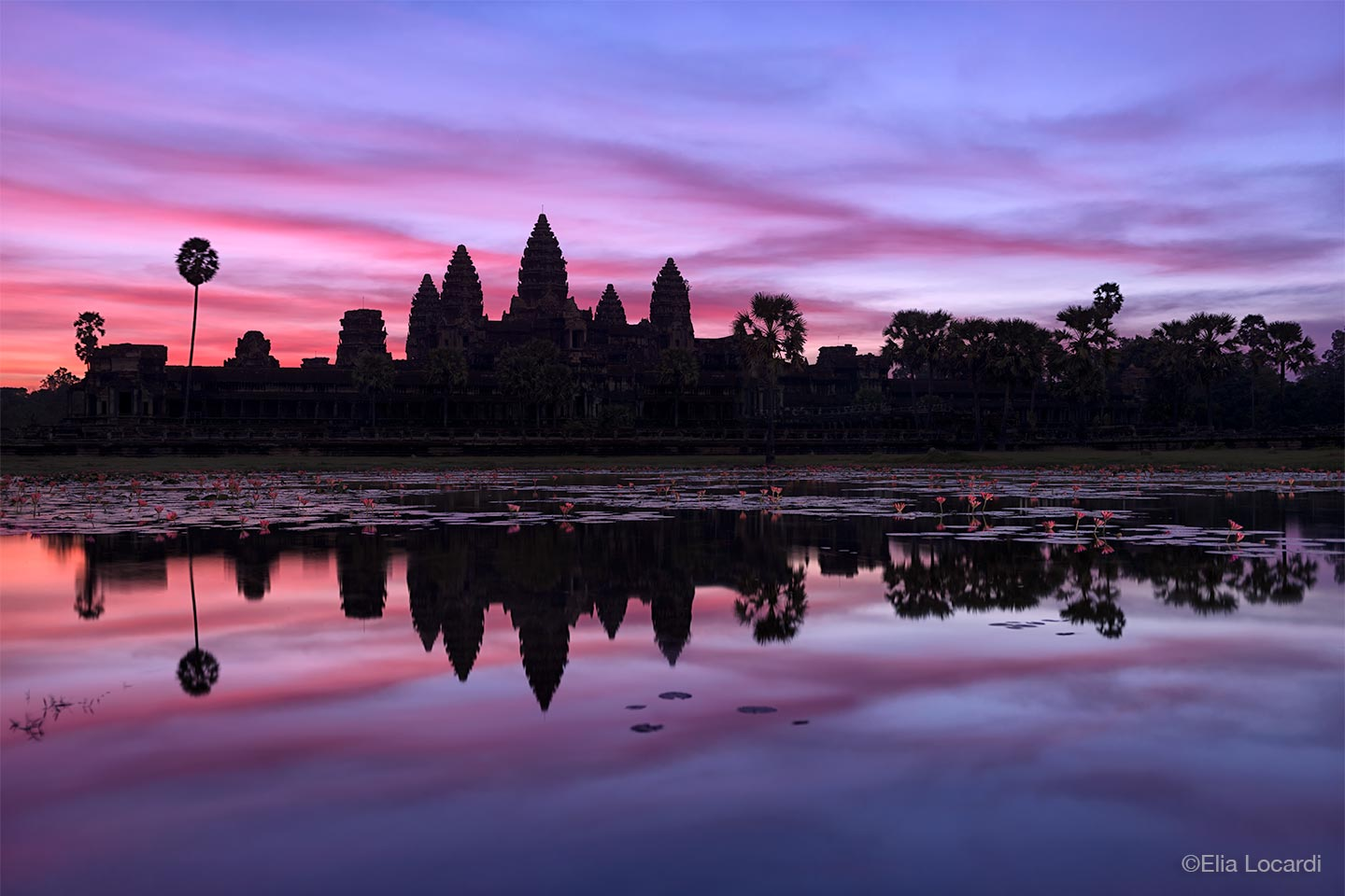 Photo-Tour-Leader-Elia-Locardi-Angkor-Siem-Reap-Cambodia