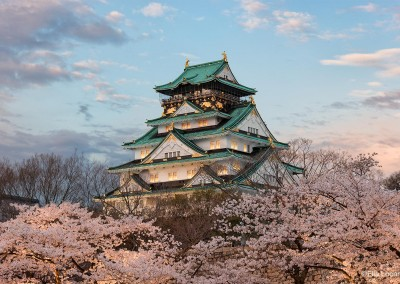 Photo-Tour-Leader-Elia-Locardi-In-Perfect-Harmony-Osaka-Japan