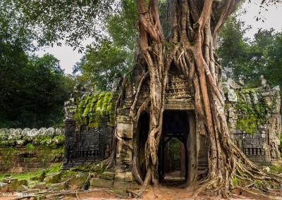 Photo-tour-Cambodia-2012-Carlos-4