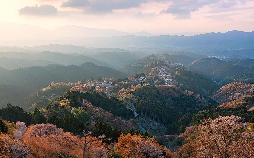 Japan-Photo-Tour-Yoshino-cherry-blossoms-Elia