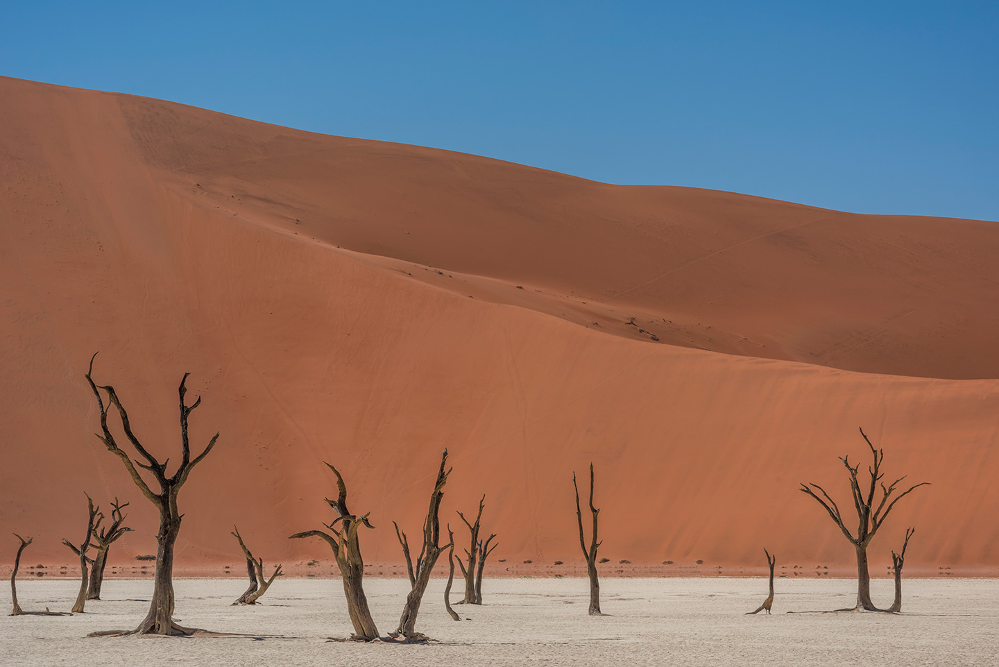 namibia-photo-tour-dany-eid-DSC_5853