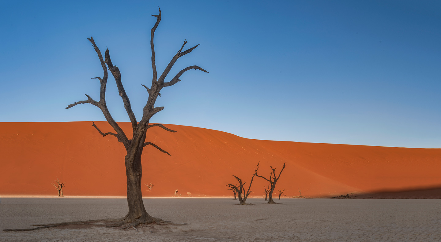 namibia-photo-tour-dany-eid-DSC_6665