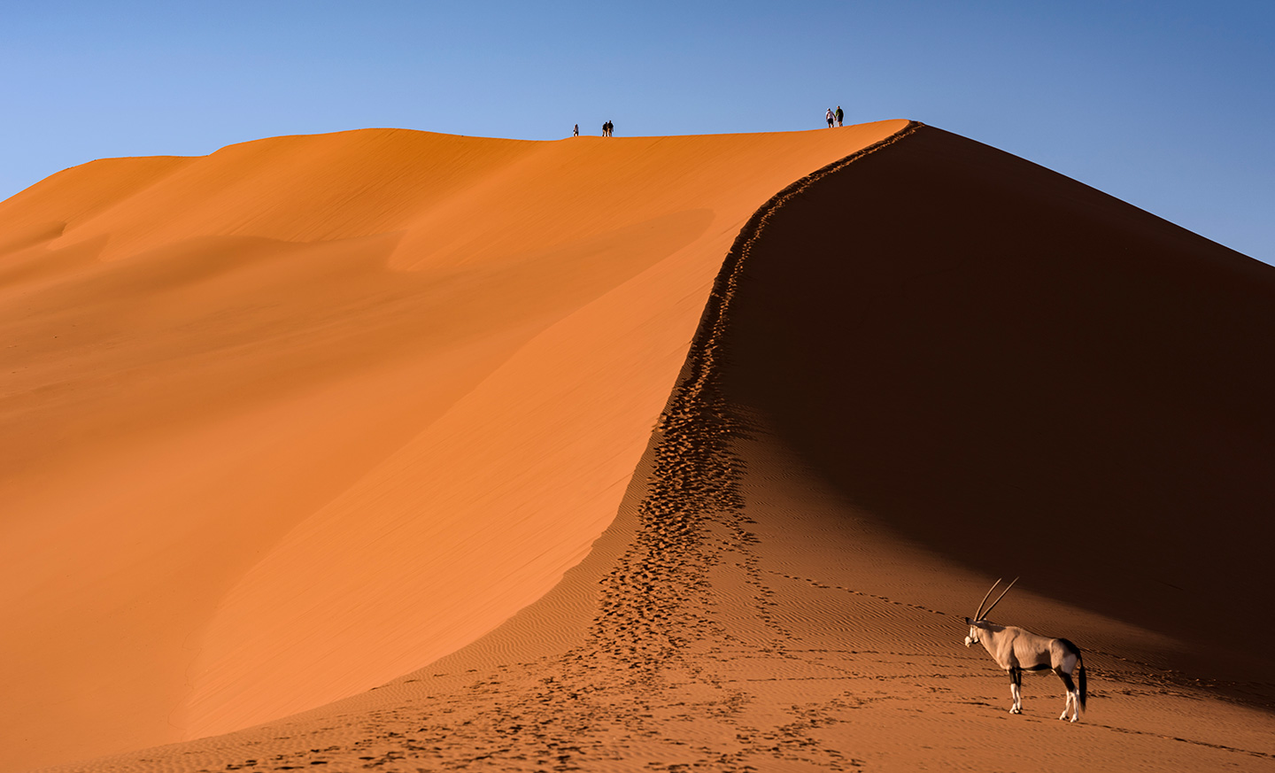 namibia-photo-tour-dany-eid-DSC_6790