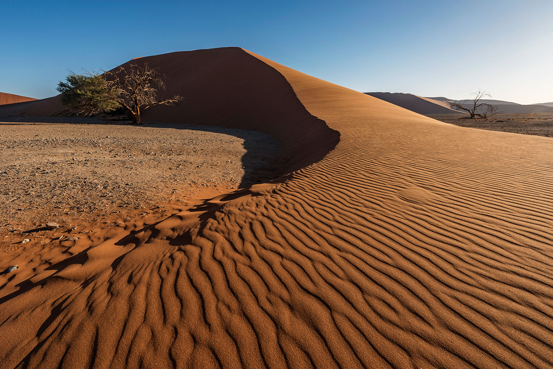 namibia-photo-tour-dany-eid-DSC_5898
