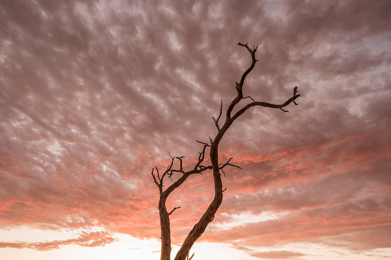 namibia-photo-tour-dany-eid-DSC_7000