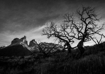Patagonia-Eclipse-Photo-Tour-24